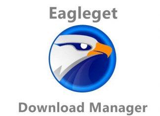 Eagleget download manager software