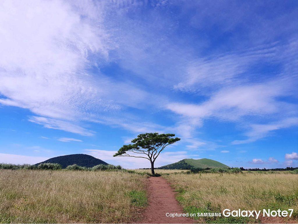 Samsung-Galaxy-Note-7-official-camera-samples6