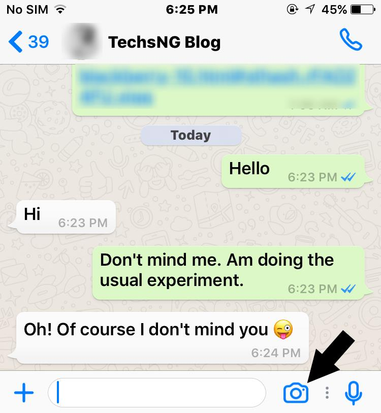 IPhone whatsapp chat screen