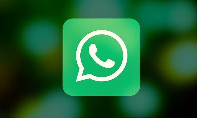 Solution to WhatsApp Status Update Feed Not Showing Updates From Contacts
